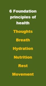 6 foundation principles of health